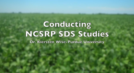 Video Thumbnail for Purdue Researcher in Project to Lessen Impact of Soybean Plant Disease